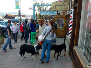 Truckee, California First Fridays